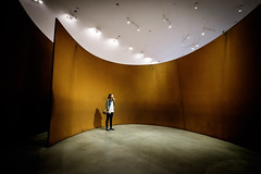 Arcelor (fernando_gm) Tags: woman colour color fujifilm fuji museo mujer museum 1024mm observer tourism travel traveling travelling turismo bilbao guggenheim arcelor architecture arquitectura art arte lights shadow people gente