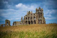 looking back (pamelaadam) Tags: whitby whitbyabbey engerlandshire building kirk abbey faith spirituality holiday2016 august summer 2016 digital fotolog thebiggestgroup