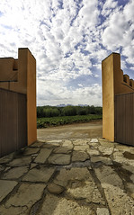 Bodega Oller del Mas (Jorge Pazos) Tags: winery pla del bages catalunya bodega vertical color canon eos 5d mark iii canonista 1740mm turismo enologa vias montserrat jorge pazos