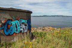 65 graffiti overlooking Inchmickery (NSJW photos) Tags: cramondisland observationbuilding forth protection graffiti water coast coastline overlook protect nsjwphotos