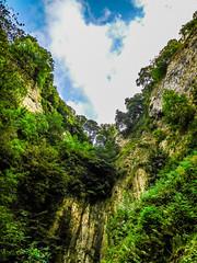 vertical limit (watergypsyrach) Tags: castleton peakcavern derbyshire rockface trees fluffywhiteclouds bluesky uk england landscape beautiful textures nikoncoolpixs7000