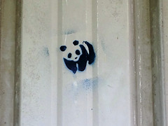 Panda Graffiti St Ives Sept 2016 (symonmreynolds) Tags: stivestownfc leamingtonfc evostikleaguesouthernpermierdivision mobilephone cellphone iphone5s stives september 2016