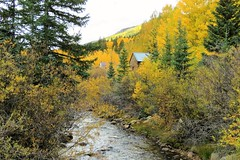 Chalk Creek in St. Elmo (Patricia Henschen) Tags: chaffeecounty sawatch range mountains mountain aspen autumn fall color gold silver mine mines mining ruins ghosttown stelmo mtprinceton chalkcreek nathrop colorado canyon sanisabelnationalforest leafpeeping fallcolor pathscaminhos county road backroad