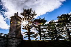 Day [042/365] (RichM.) Tags: bridge blue trees sky sun sunlight grass sunshine statue clouds lensflare flare sunrays sunbeam sunflare mtvernontrail arlingtonmemorialbridge day042 photographyproject365