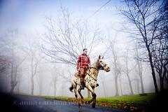 Fog (ACNegri) Tags: espaa horse fog caballo spain espanha bilbao neblina cavalo niebla