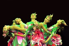 Chinese New Year Celebrations.........Lotus Dancers (pallab seth) Tags: uk england people london festival spring europe chinatown dancing image candid joy performance culture trafalgarsquare eu chinesenewyear dancer celebration performer tamron 2012  kungheifatchoy lotusdancers      tamronaf90mmf28dispam11macro tamronaf90mmf28dispam11macrolens blinkagain nikond3100  thechinesenewyearofthedragon