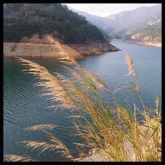 Beautiful scene (d-k-t) Tags: hongkong taitamreservoir p1060573
