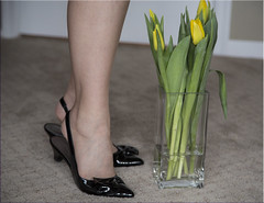 """""""Tiptoe Through The Tulips"""" (Jill Clardy) Tags: flowers leather yellow carpet pumps tulips legs sp 100views stems heels vase through ankle day33 tiptoe thru patent slingback gams day33365 3652013 week5theme 365the2013edition 02feb13 4b4a0219"""