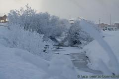 23330_AlberiGhiacciatiSpoel_20130125_Copia_20130125 (Luca L. Bormolini) Tags: winter alberi inverno livigno nevicata ghiaccio alberighiacciati alberidineve lucypipe lucalorenzobormolini nevealberighiacciatighiaccionevicata