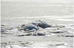 ijsschotsen (20D33729) (Hetwie) Tags: ice marken noordholland ijs markermeer ijsschotsen