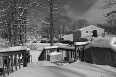 My Murky Porch (Bri Leigh McD) Tags: sky blackandwhite weather canon newjersey backyard nemo nj porch canonrebel brileighmcd stormnemo