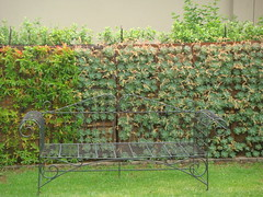 Gabion green wall (Badec Bros Deco) Tags: architecture garden design designer steel decorating benches deco designed greenwall gabions gabion badec badecbrosdeco badecbros