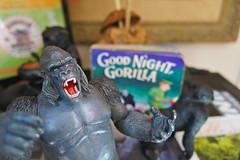 Good Night, Gorilla (AndersHolvickThomas) Tags: macro toys funny gorilla