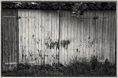 Abandoned garage yard (Drummingjack) Tags: bw abandoned nature monochrome grass photoshop silver germany deutschland outdoor availablelight garage natur ps nik gras 1855 available hof lightroom tren oss nex efex 5n nex5n
