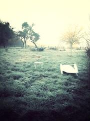 Frozen mornings (jjmahe) Tags: uploaded:by=flickrmobile flickriosapp:filter=mammoth mammothfilter