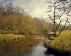 Winter Serenity (vesna1962) Tags: park trees winter england nature water woodland landscape scenery stream beck leeds explore marsh goldenacrepark westyorkshire parkland theworldwelivein memoriesbook magicunicornverybest magicunicornmasterpiece marshbeck