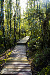 Nz park 3 (Nuxis [Davide]) Tags: newzealand nature way sony parks nz a77 naturalpark alpha77