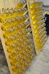 Riddling the sparkling pine wine (Jacob Damgaard) Tags: food cold hand wine drink champagne cider winery rack danish riddle sparklingwine jutland applewine riddling jensskovgaard champagnerack coldhandwinery