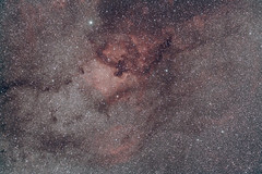 NGC7000 with CLS filter (s58y) Tags: photoshop canon contax astrophoto cls astrophysics carlzeiss 500d northamericanebula canon500d ngc7000 astroimaging astrophography ap900 registar imagesplus canoneosutility contaxyashica eosutility astroimage Astrometrydotnet:status=solved astronomik carlzeiss85mmf28 t1i canont1i photoshopcs5 astronomikcls astronomikclsfilter Astrometrydotnet:version=14400 contax85mmf28 astrophysicsap900 contaxyashica85mmf28 Astrometrydotnet:id=alpha20130384259480