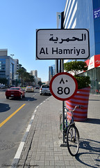 Al Hamriya Street (Goepfert Damien) Tags: street al uae damien duba goepfert hamriya damiengoepfert alhamriyastreet