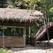 Raman Bah Tuin's jungle hut