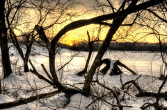 Last Light (Explored) (Wes Iversen) Tags: trees snow ice lakes sunsets gnarly hdr odc hcs nikkor18300mm ourdailychallenge clichsaturday busseforestnaturepreserve