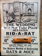 RID-A-RAT (Design Archives) Tags: design exhibitions whitechapelartgallery designarchives barbarajones blackeyesandlemonade