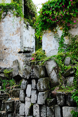 Walls on The Quaint Streets of St George, Bermuda (ShootsNikon) Tags: ocean flowers trees seascape beach swimming landscape fishing sand sailing plumeria scenic boating bermuda stgeorge atlanticocean gulfstream cruiseships dockyard pinksand tobaccobay turquoisewater cruiseport nikond3 judithmalley rockyformations