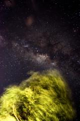 20130317-DSC_0320-6b (inefekt69) Tags: longexposure way stars nikon great galaxy astrophotography astronomy universe milky milkyway rift greatrift Astrometrydotnet:status=solved d5100 Astrometrydotnet:version=14400 Astrometrydotnet:id=alpha20130337195595