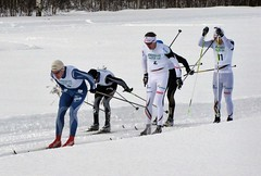 Skatamarksloppet 2013 / The ski-race in Skatamark (HJsfoto) Tags: winter snow sn boden skirace skatamarksloppet