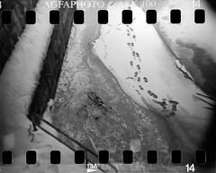 Ice Bike (kmether) Tags: finland turku apx100 agfa fppdebonair