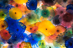 The Glass Ceiling of the Bellagio (@mikescic) Tags: colorful colors blown glass ceiling bellagio lasvegas nevada nv