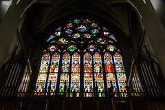 St. Augustine Front Stained Glass Cathedral Artwork Dublin Ireland (HunterBliss) Tags: staugustine artwork beatufiul building cathedral catholic church culture dark europe facade glass glowing historic historical history inside interior ireland irish landmark masterpiece monument mural old organ protestant religious saint stained tourism tourist travel warm worshipping