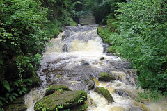 East Lyn River (TonyKRO) Tags: river water watersmeet lynton nature green trees boulders rocks