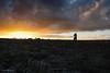 DSC_0191 (timmie_winch) Tags: nikon nikond3000 d3000 august august2016 2016 sun sunset sunsetsuffolk sunsetoversuffolkcountryside sunsetovercornfields sunsetovercornfield silhouette 18105mm 18105vr nikon18105mmvrlens shadows golden goldenhour goldenlight elliedunn ellie eleanordunn ells eleanor ellsdunn dunn landscape landscapephotography landscapephotographer naturephotographer naturephotography nature portrait portraitphotography portraiture portraitphotographer portraiturephotography portraiturephotographer portraitofaphotogragher portraitofaphotographer timwinchphotography tim timwinch winch debenham ip14 suffolk