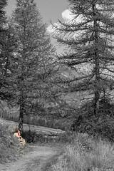 la fumatrice (Clay Bass) Tags: 2485 pontechianale bw clouds d750 nikon path selective smoke trees woman