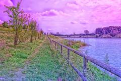 walk again (Alessio Pagani) Tags: walk again camminare ancora violet sun green color sky storm lago lake increa brugherio panorama verde sentiero alberi parco