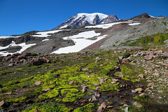 Paradise Skyline (Dex Horton Photography) Tags: mtrainier mtrainiernationalpark skyline trail golden gate paradise glacier visitor center sun sky outdoor wet bog plants blue mountain snow ice summer peak best bestof washingtonstate dexhorton