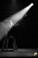 Elas Bailarinas (Marcelo Seixas) Tags: ballet dancing gold beautiful lovely cady action dance dana ballerina art bravo best arte passo class performace poise balerina balance artistic mulher linda woman boavista roraima brazil amazonia girl sapatilha star show apresentao boa vista espetculo performances professional profissional ballo bal bailariana bailarino ballerino palco perfect perfeito perfeio musculos muscles young jovem danze danza tanz tones tons surreal love people photo photography portrait instagram kalizasharlaflores celular sansung marceloseixas angels balet baletka baletki baletky balett ballerinas