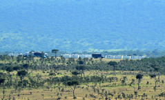PWS_6682 (paulshaffner) Tags: dorobo safaris tanzania soit orgoss loliondo dorobosafaris safari education abroad studyabroad penn state pennstate biology pennstatebiology