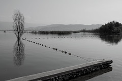 Zig Zag (cuckove) Tags: dxo dojran landscape diagonal zigzag composition cuckove canon 40d lake shore 24mm