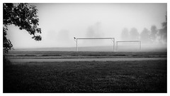 The Crow (:: Blende 22 ::) Tags: black white blackwhite blackandwhite monochrome bw schwarz weis schwarzweis einfarbig fusballplatz football fog foggy morning earlymorning frh morgen morgens wiese deutschland bayern benediktbeuren trees tree bume baum canoneos5dmarkii ef2470f28liiusm fusballtor krhe crow goal