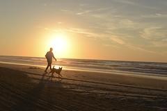 Early Walk (jtr501) Tags: sand ocean beach mirning dogwalker dog walk morning sunrise sun