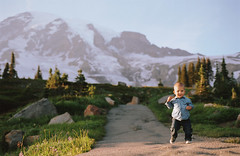 small steps, big world (manyfires) Tags: film analog nikonf100 35mm henry son boy toddler mtrainier mtrainiernationalpark washington pnw pacificnorthwest nationalpark sunset golden magichour paradise skylinetrail valley mountain wildflowers path trail hike hiking landscape portrait trees