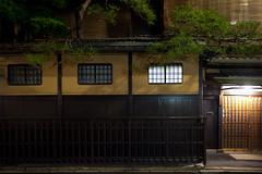 Kyoto (AdrienG.) Tags: geisha  maiko  gion  kyoto  japon japan  nikon  d700 nikkor 24 70 f28 afs