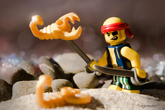 Hate Scorpions (legomeee) Tags: lego legography legophotography minifigures legominifigs photo life series 16 pirates scorpions hate outdoor