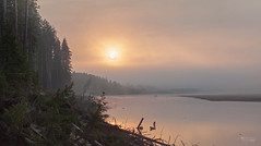 Foggy sunrise on the Luza river (v.moreev) Tags: cloudy morning river dawn luzskydistrict kirovregion rafting trekking ancientwaterway