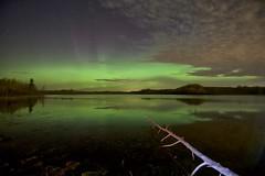 aurora borealis (John Andersen (JPAndersen images)) Tags: aurora bigdipper madden night pond reflections stars tamron15mm trees