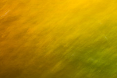 Foliage Flutter (Brian Truono Photography) Tags: cincinnati eastforklake icm ohio abstract autumn blur colorful colors fineart fineartphotography green landscape leaves light longexposure motion natural nature orange palette park sky trees yellow zoom