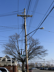 Right Of Way (EssGee Photography) Tags: street travel ny newyork color tree digital canon pattern patterns tourist powershot powerlines lamppost wires electricity powerpole electriclines howardbeach a590 a590is